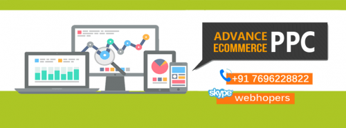 PPC Services for eCommerce Sites