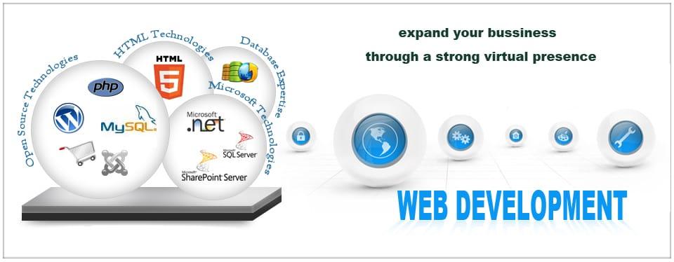 Web Development Company in Panchkula