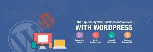 WordPress Development Company in Chandigarh