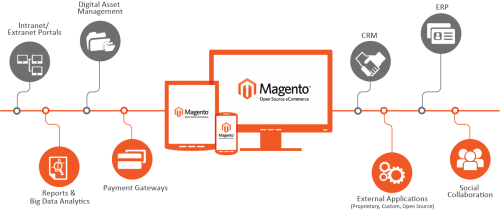 Magento Development Company in Chandigarh