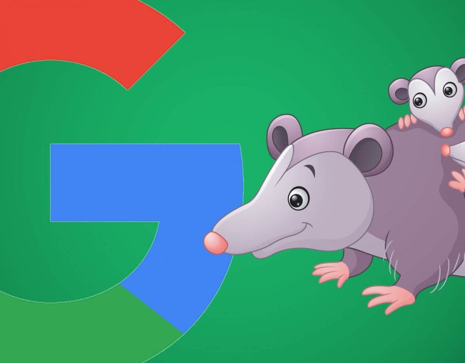 How SEO has Changed with Possum Update