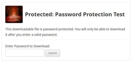 How To Create Password Protected Download In WordPress
