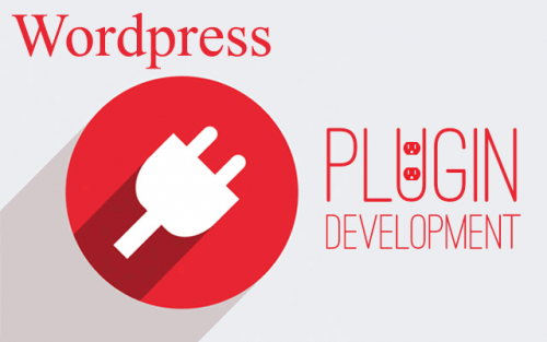 Worpress plugin development Services