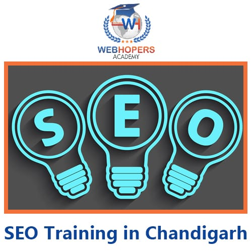 top 10 SEO Training Course in Chandigarh
